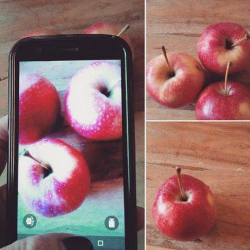 Der Apfel fällt nicht weit vom Birnbaum!