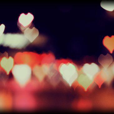 Das Herz ist ein einsamer Jäger